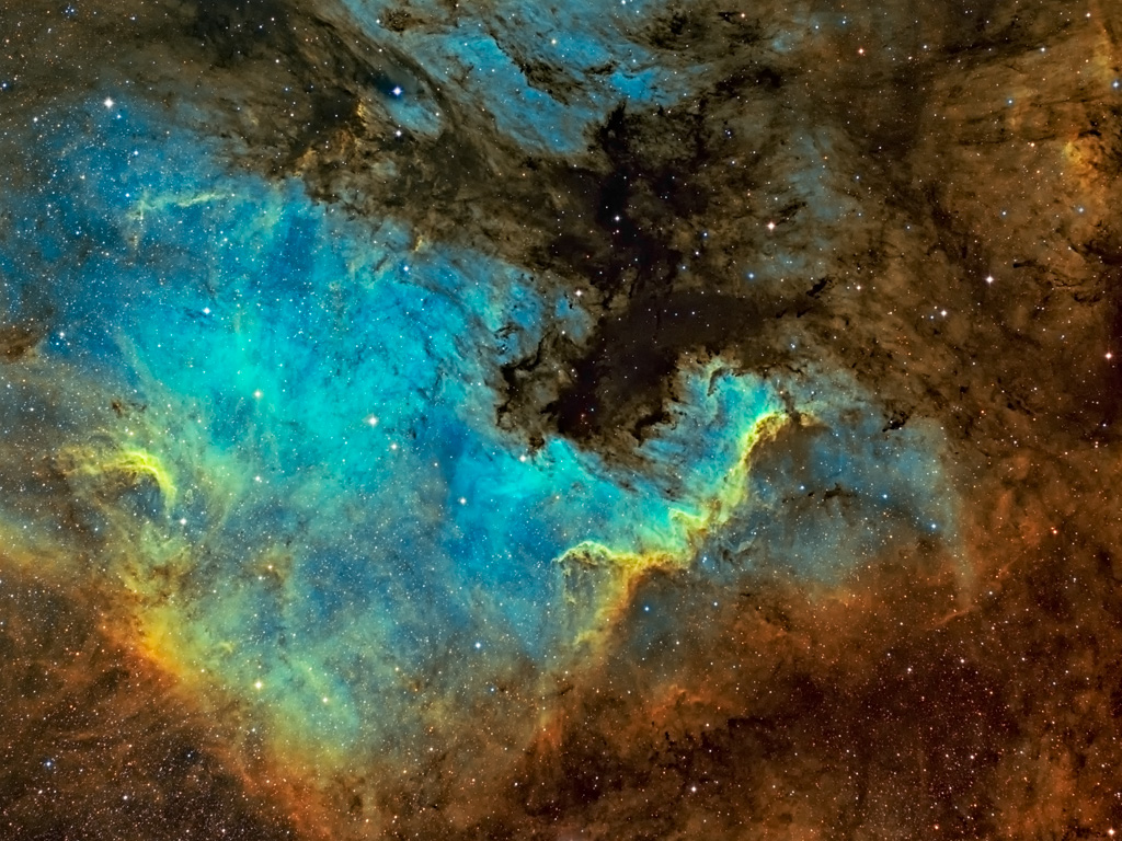 NGC7000 North American Nebula And The Cygnus Wall In Tricolour
